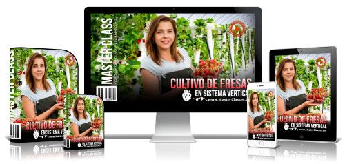 Curso de cultivos de fresa